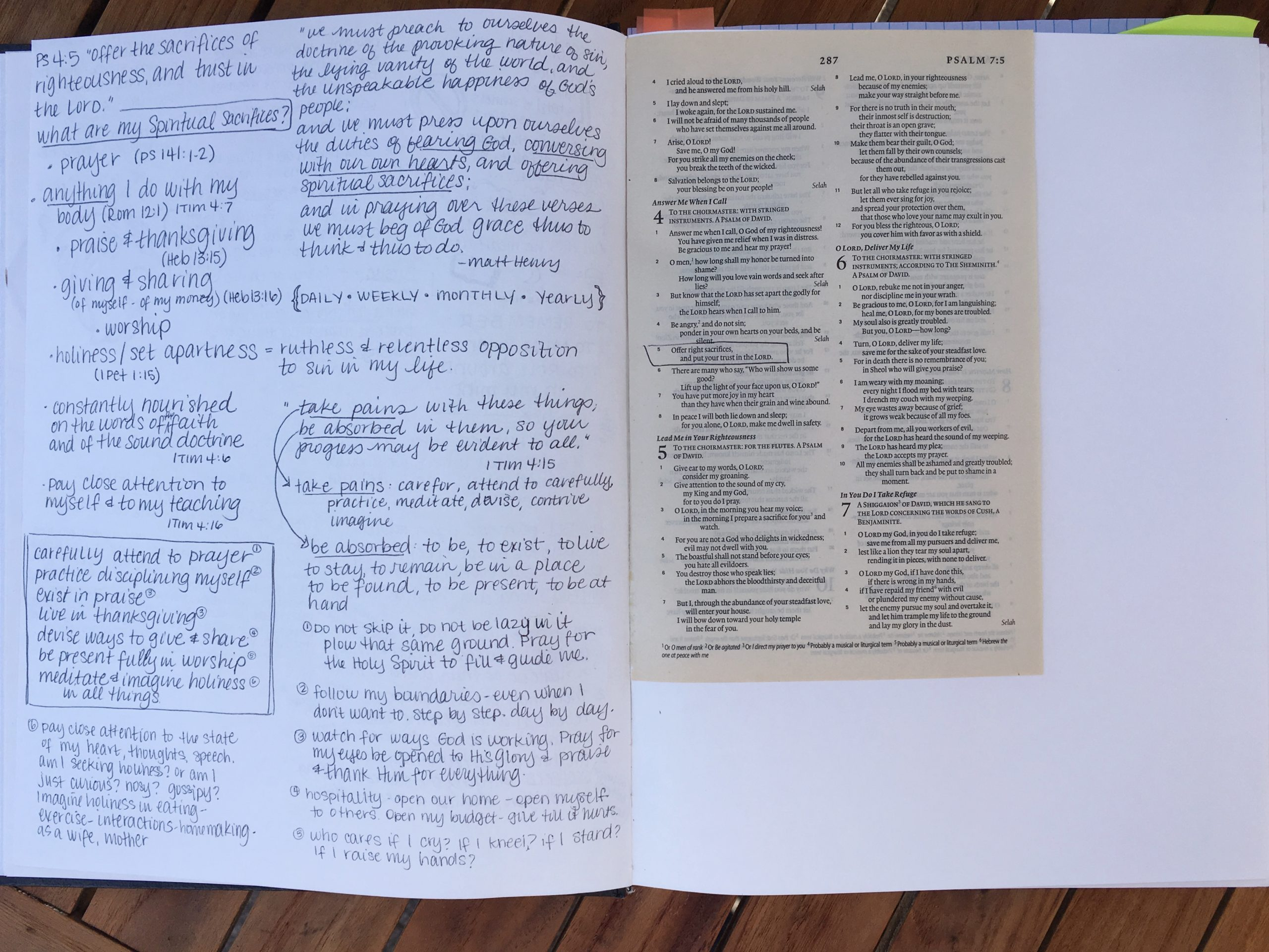 Jonathan Edwards inspired DIY Blank Bible